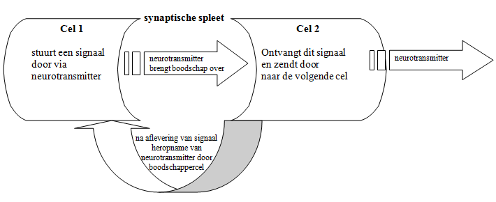 medicatienieuws3